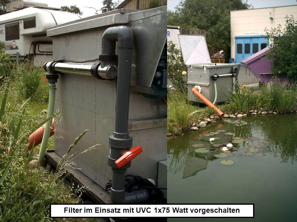 Filter im Einsatz mit UVC 1x75 Watt vorgeschalten