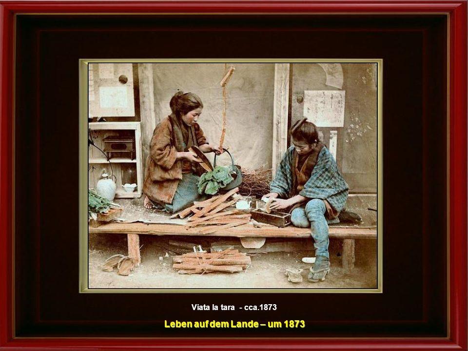 Viata la tara - cca.1873 Leben auf dem Lande – um 1873