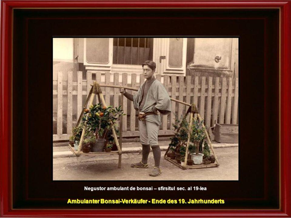 Ambulanter Bonsai-Verkäufer - Ende des 19. Jahrhunderts