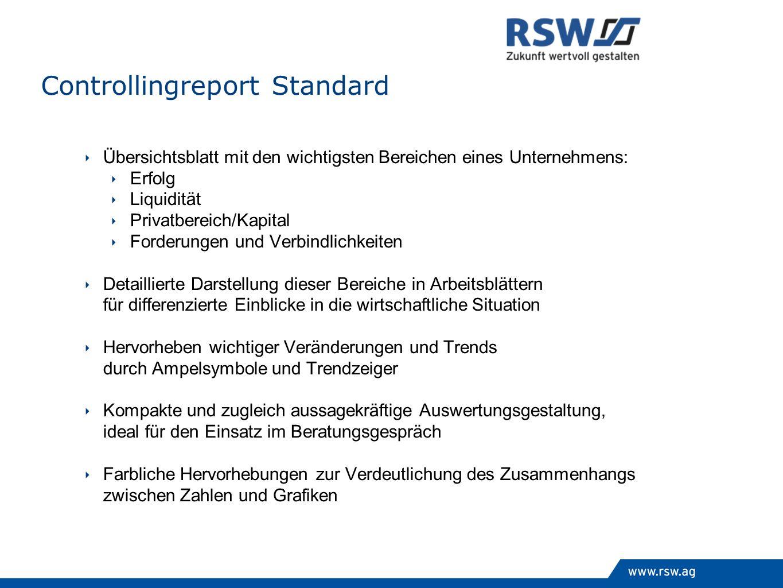 Controllingreport Standard