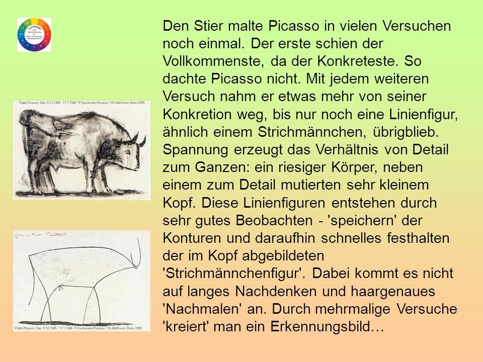 Den Stier malte Picasso in vielen Versuchen noch einmal
