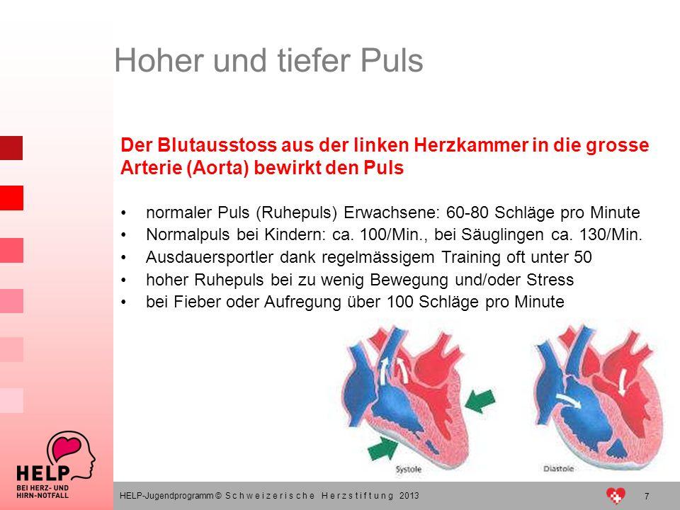 Hoher und tiefer Puls Der Blutausstoss aus der linken Herzkammer in die grosse Arterie (Aorta) bewirkt den Puls.
