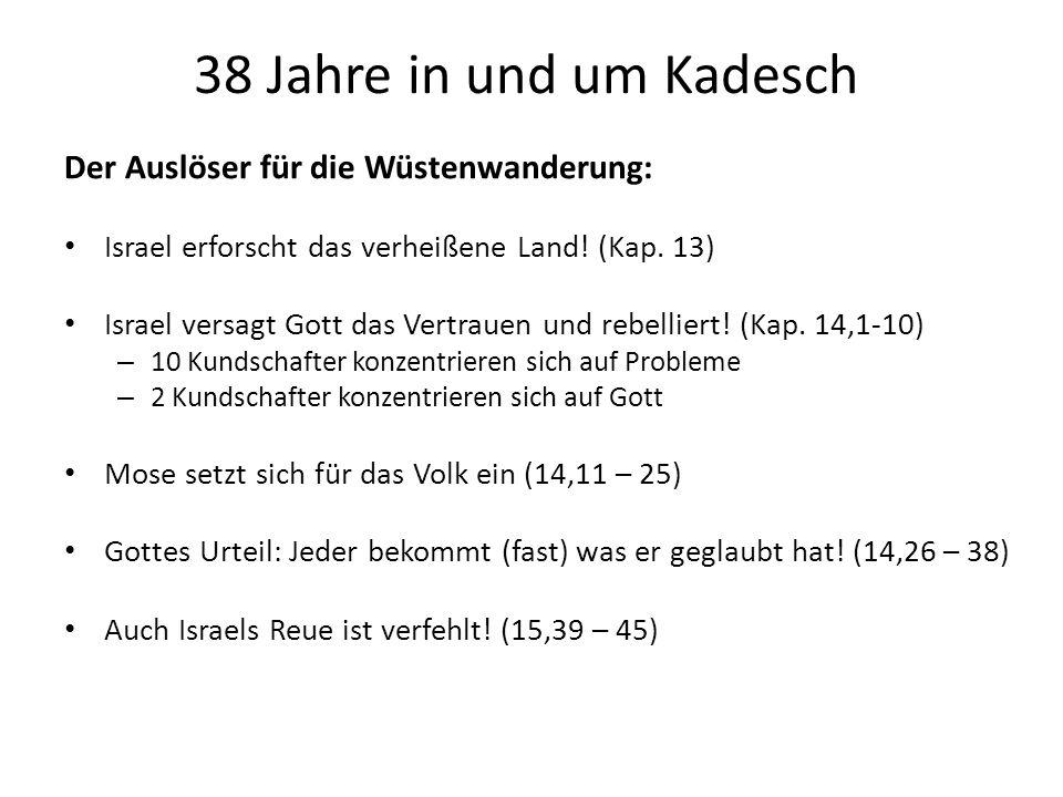 38 Jahre in und um Kadesch Der Auslöser für die Wüstenwanderung: