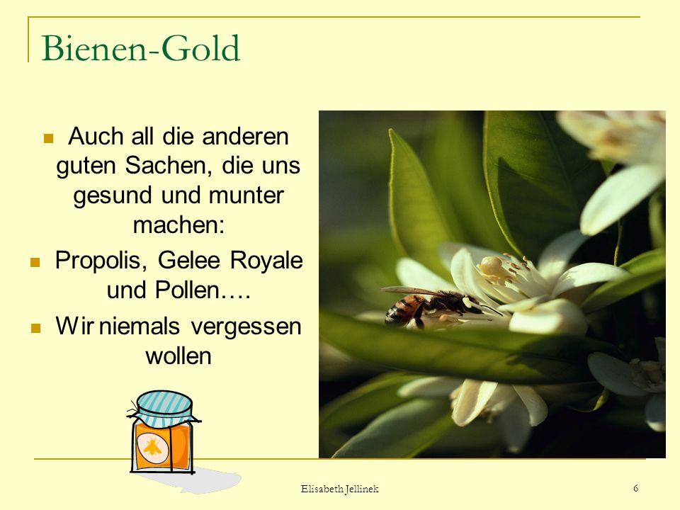 Bienen-Gold Auch all die anderen guten Sachen, die uns gesund und munter machen: Propolis, Gelee Royale und Pollen….
