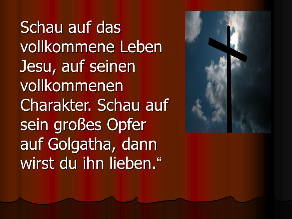 Schau auf das vollkommene Leben Jesu, auf seinen vollkommenen Charakter.