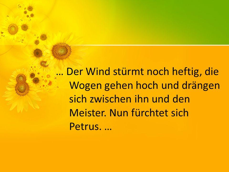 … Der Wind stürmt noch heftig, die Wogen gehen hoch und drängen sich zwischen ihn und den Meister.