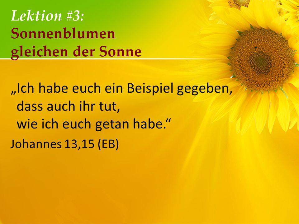 Lektion #3: Sonnenblumen gleichen der Sonne