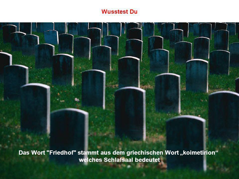 """Das Wort Friedhof stammt aus dem griechischen Wort """"koimetirion"""