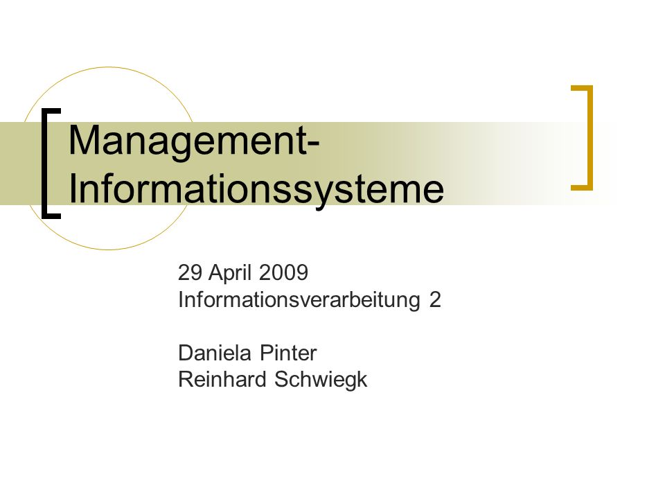 Management-Informationssysteme