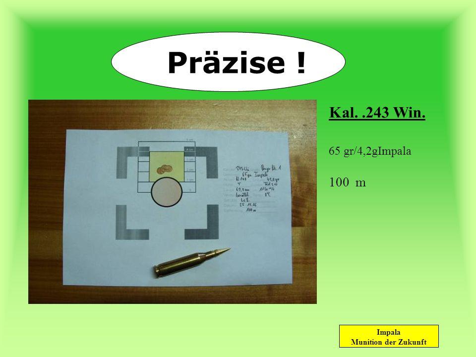 Präzise ! Kal. .243 Win. 65 gr/4,2gImpala 100 m