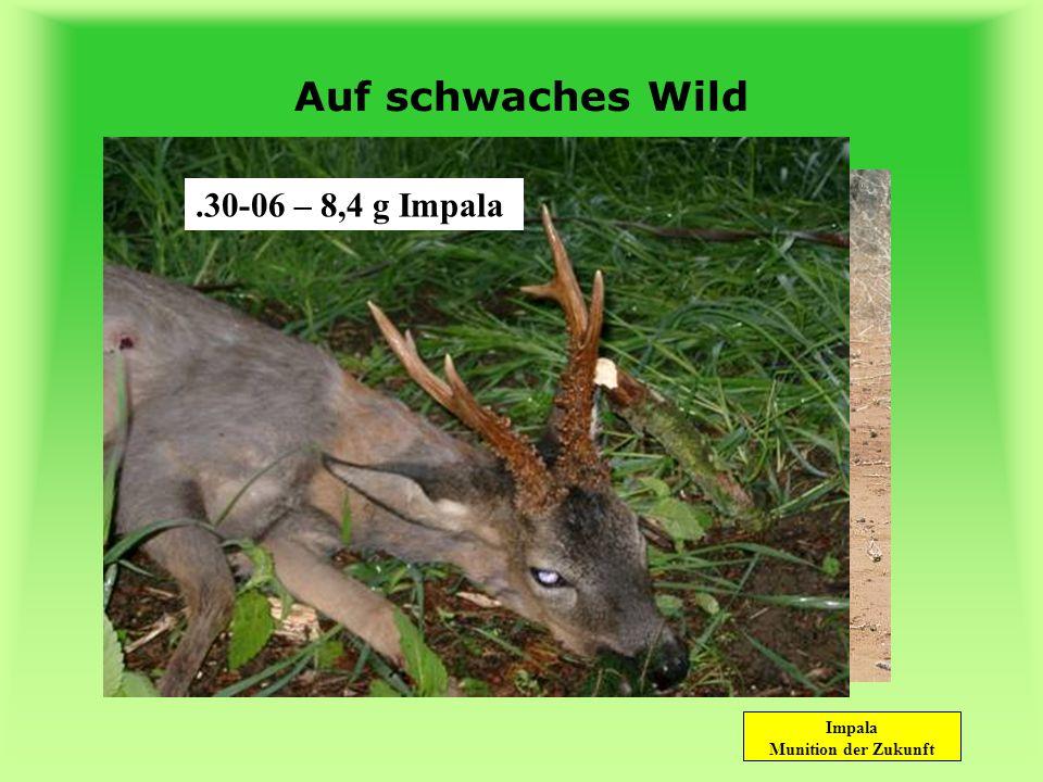 Auf schwaches Wild .22 Hornet – 2,3 g Impala .30-06 – 8,4 g Impala