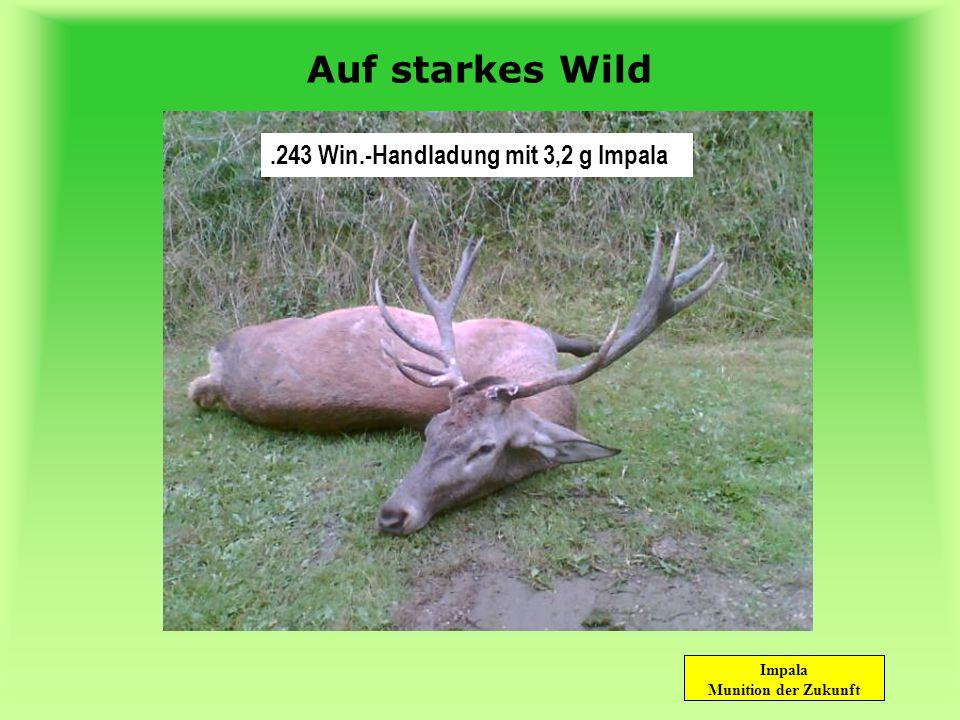 Auf starkes Wild .243 Win.-Handladung mit 3,2 g Impala