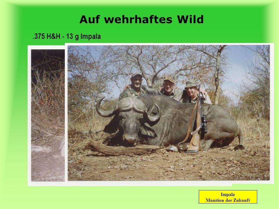 Auf wehrhaftes Wild .375 H&H - 13 g Impala