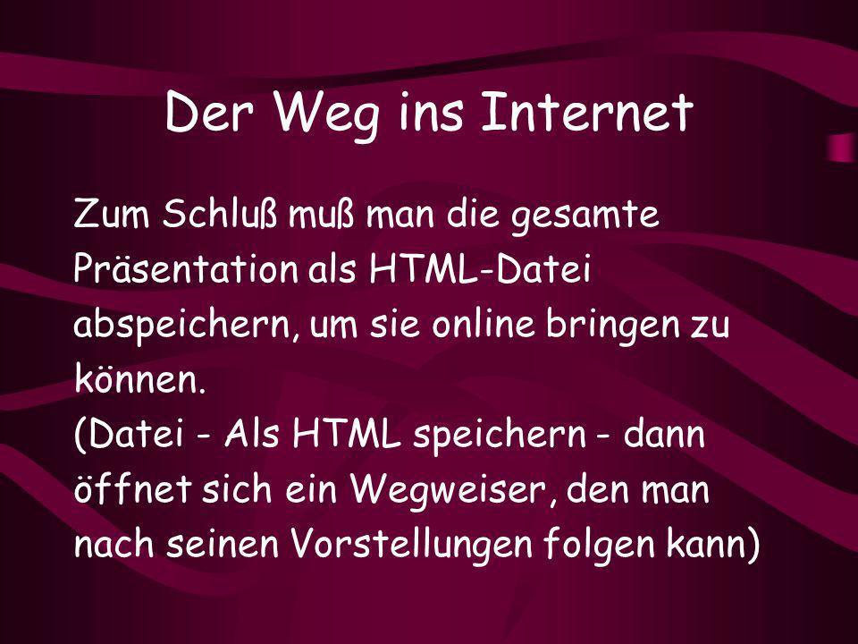 Der Weg ins Internet Zum Schluß muß man die gesamte