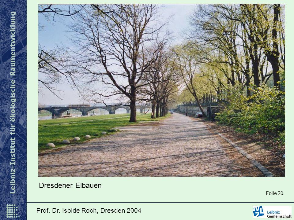 Dresdener Elbauen Folie 20 Prof. Dr. Isolde Roch, Dresden 2004