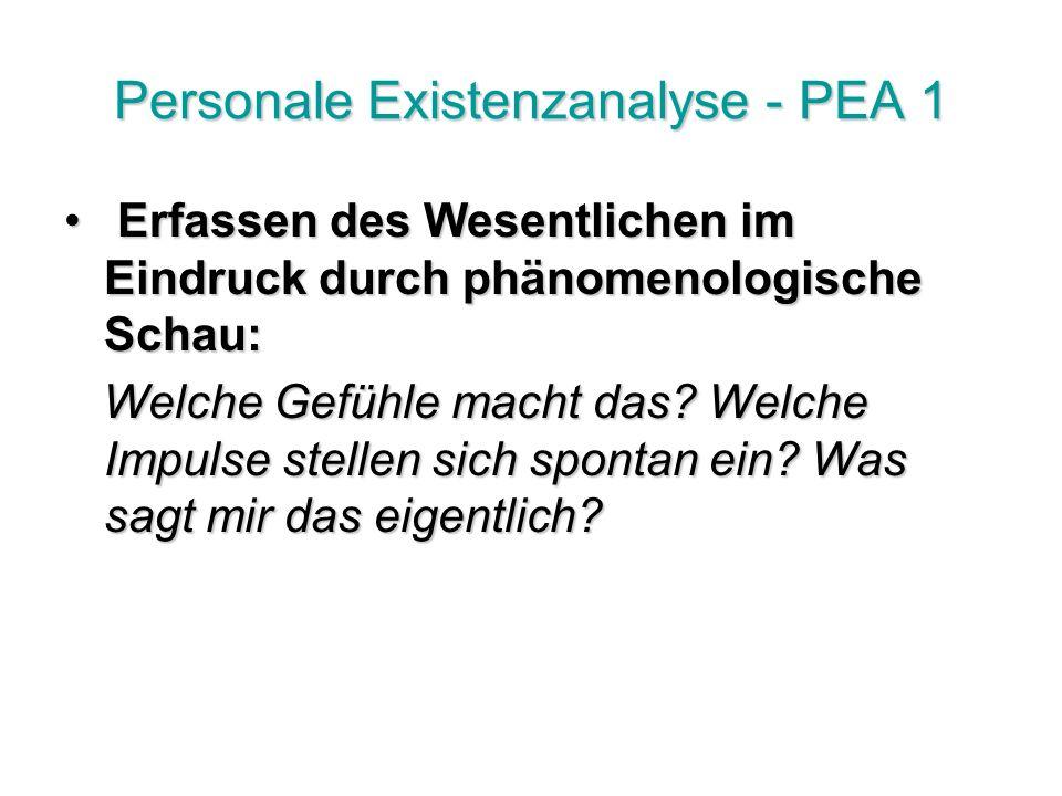 Personale Existenzanalyse - PEA 1