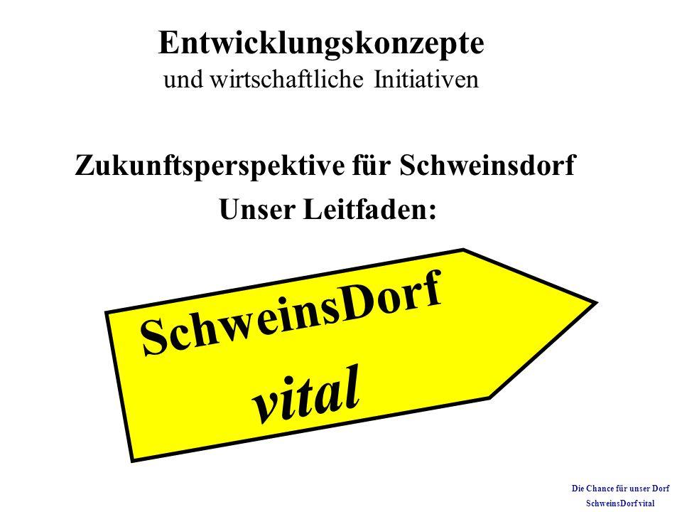 Zukunftsperspektive für Schweinsdorf Die Chance für unser Dorf