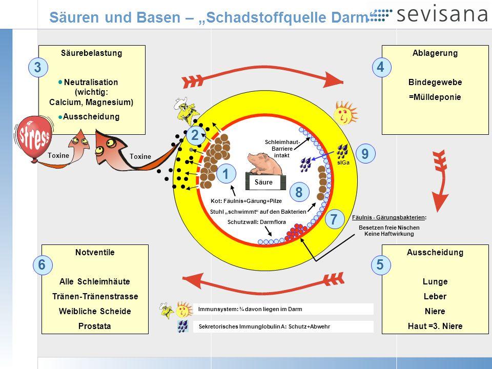 """Säuren und Basen – """"Schadstoffquelle Darm"""