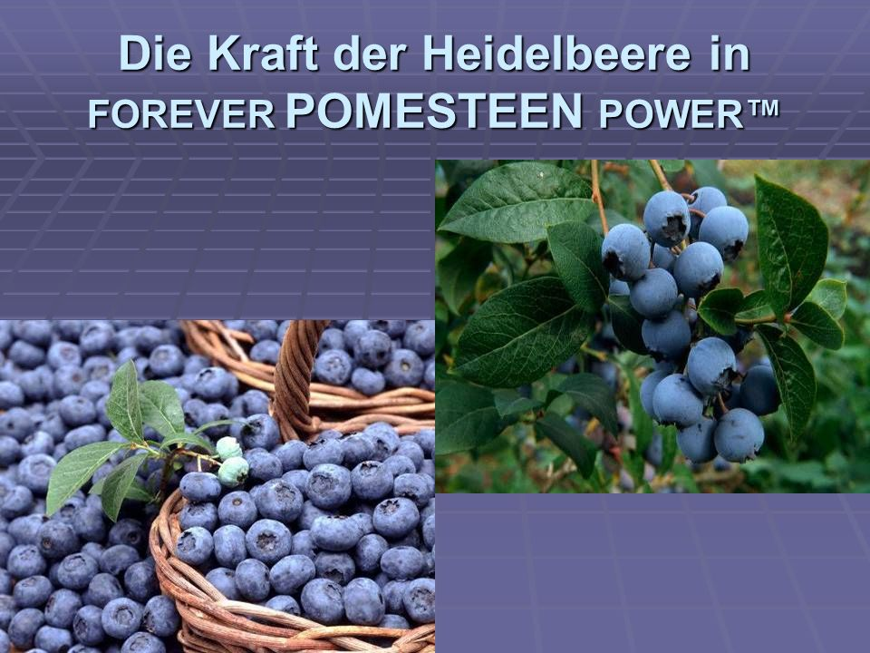 Die Kraft der Heidelbeere in FOREVER POMESTEEN POWER™