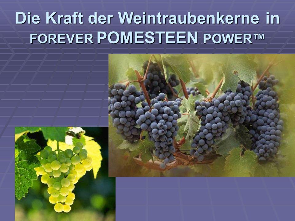 Die Kraft der Weintraubenkerne in FOREVER POMESTEEN POWER™