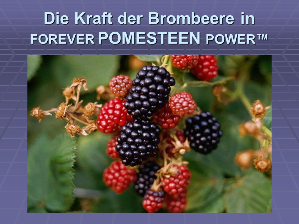 Die Kraft der Brombeere in FOREVER POMESTEEN POWER™
