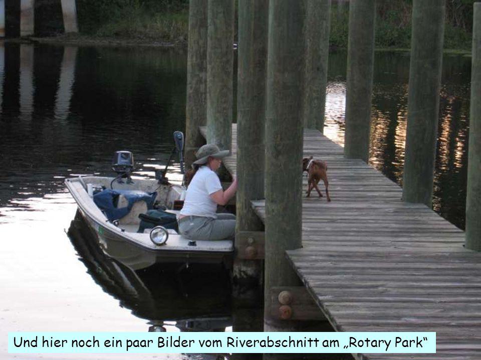 """Und hier noch ein paar Bilder vom Riverabschnitt am """"Rotary Park"""