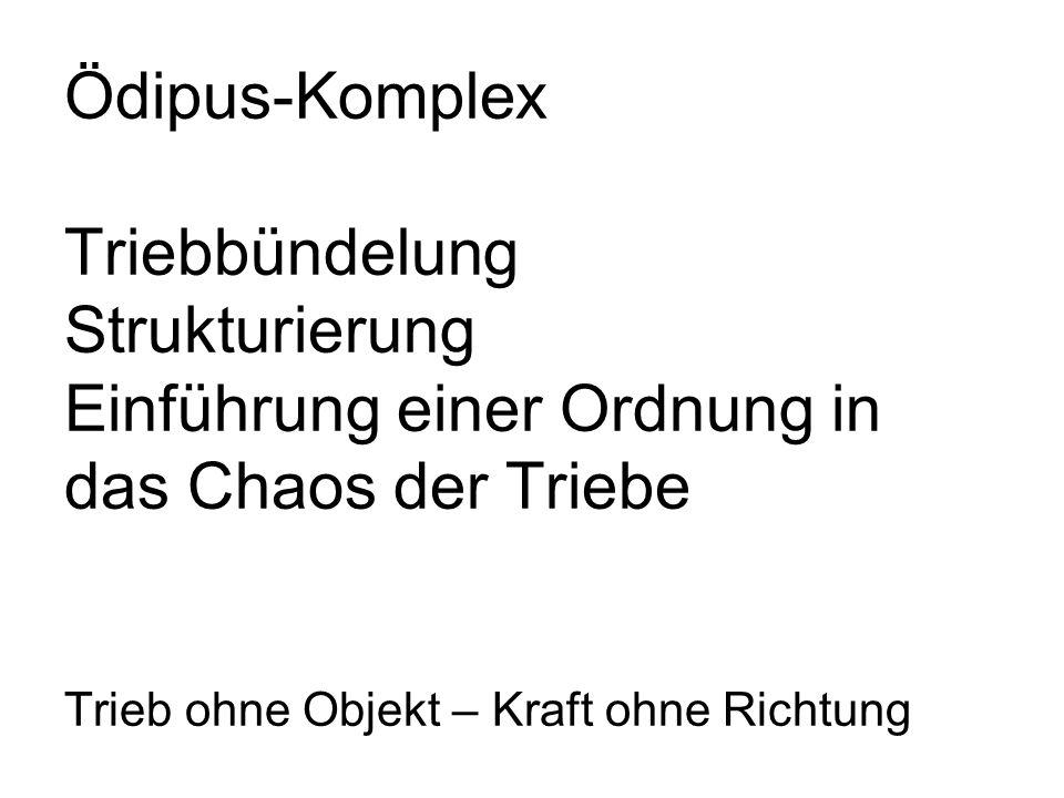 Ödipus-Komplex Triebbündelung Strukturierung Einführung einer Ordnung in das Chaos der Triebe Trieb ohne Objekt – Kraft ohne Richtung