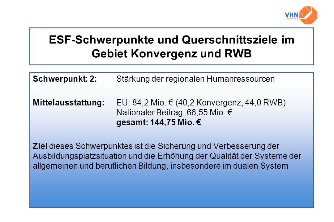 ESF-Schwerpunkte und Querschnittsziele im Gebiet Konvergenz und RWB