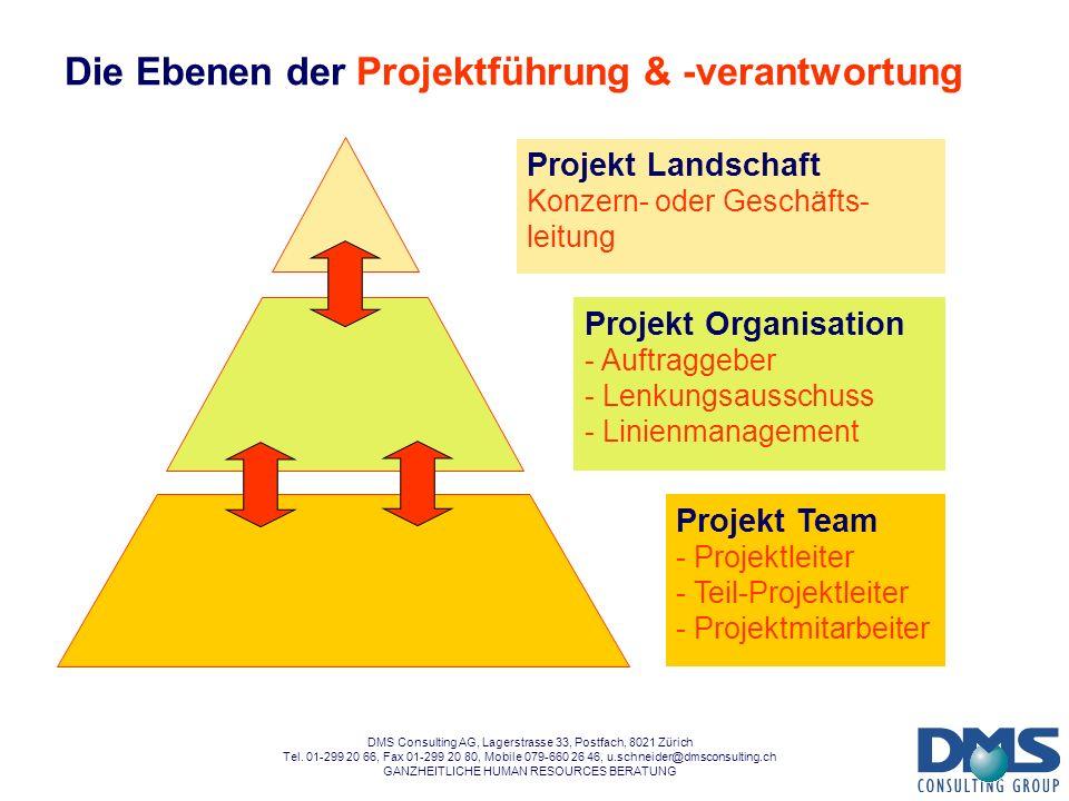 Die Ebenen der Projektführung & -verantwortung