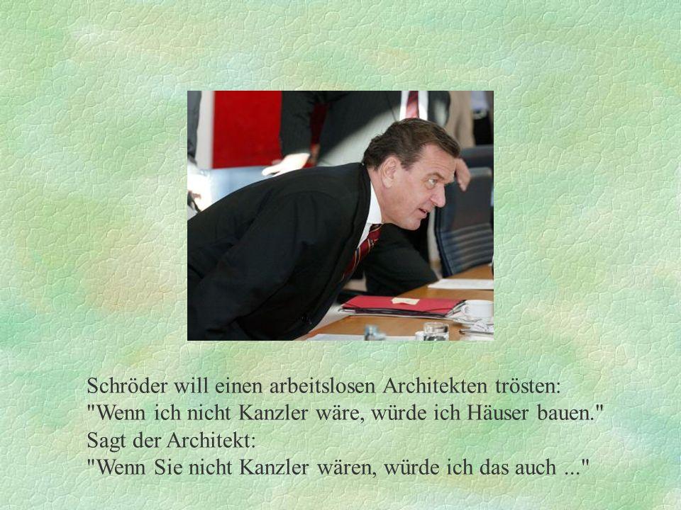 Schröder will einen arbeitslosen Architekten trösten: