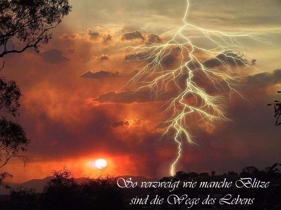 So verzweigt wie manche Blitze sind die Wege des Lebens