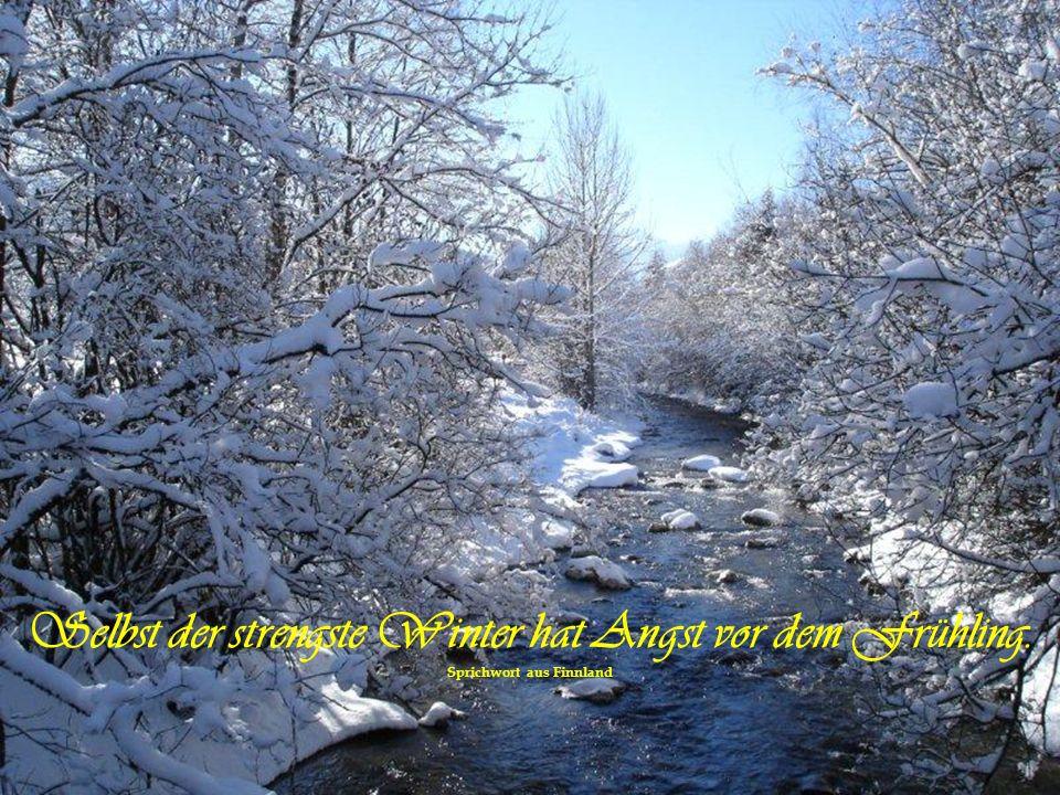 Selbst der strengste Winter hat Angst vor dem Frühling.