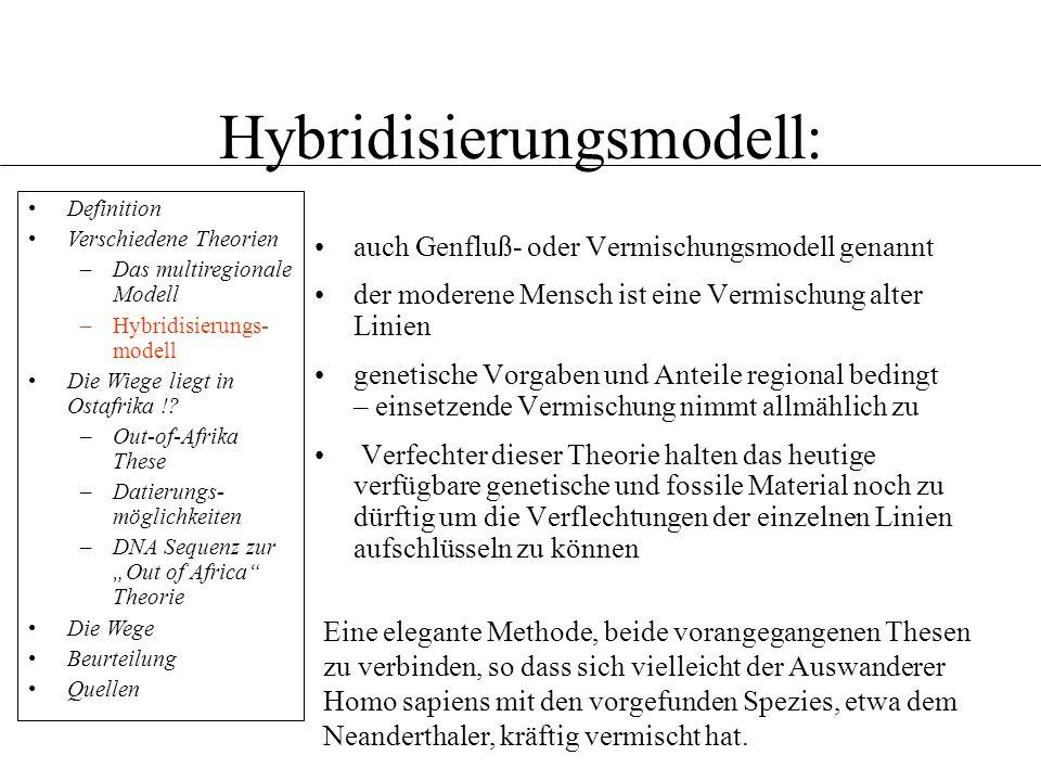 Hybridisierungsmodell:
