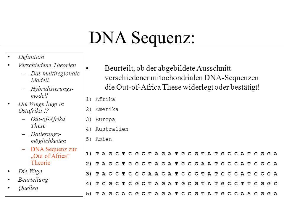 DNA Sequenz: Definition. Verschiedene Theorien. Das multiregionale Modell. Hybridisierungs-modell.