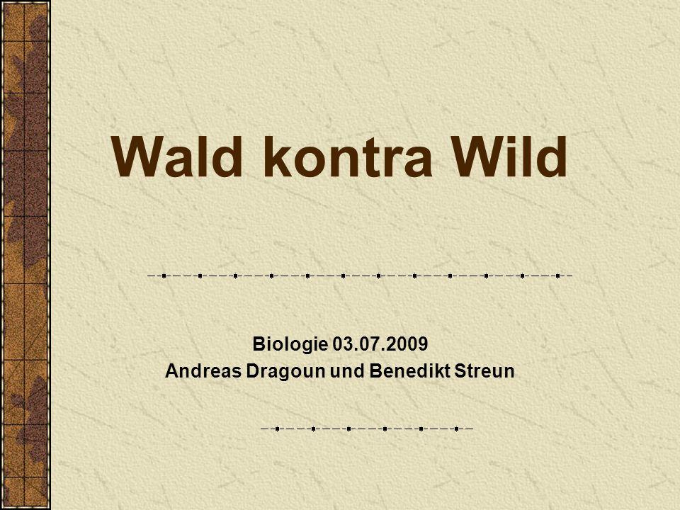 Biologie 03.07.2009 Andreas Dragoun und Benedikt Streun