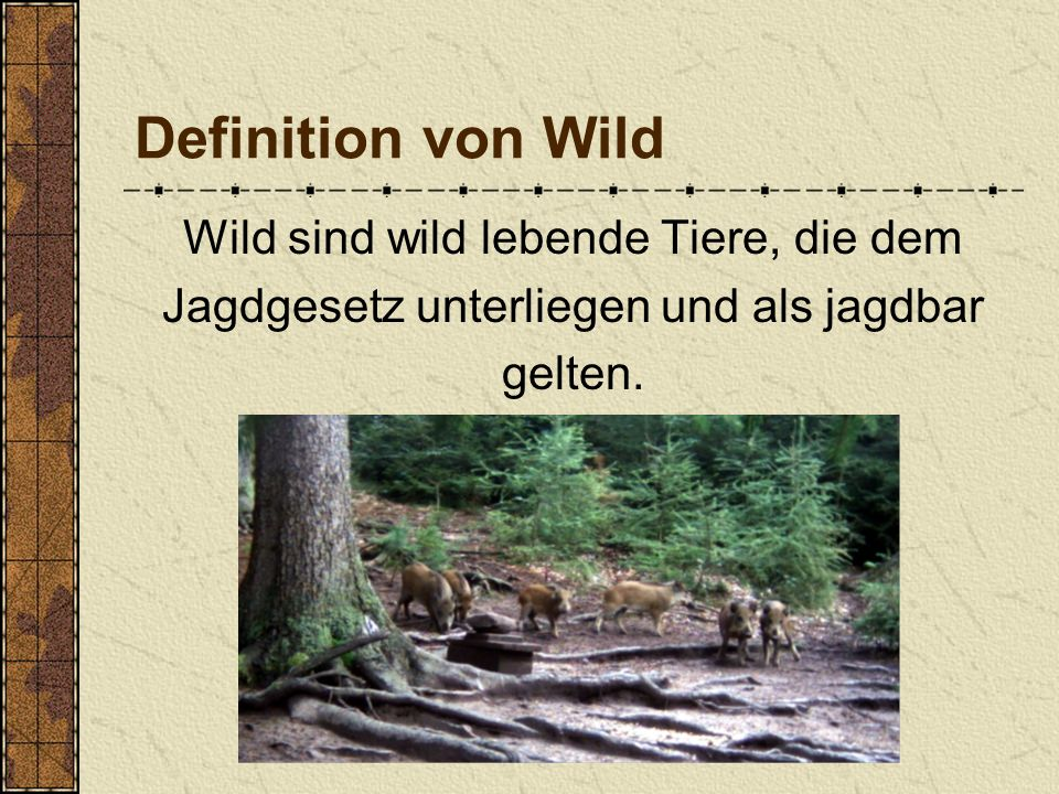 Definition von Wild Wild sind wild lebende Tiere, die dem