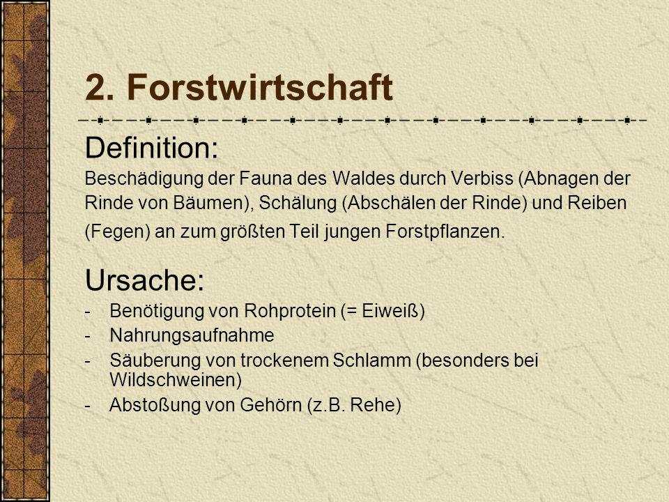 2. Forstwirtschaft Definition: Ursache: