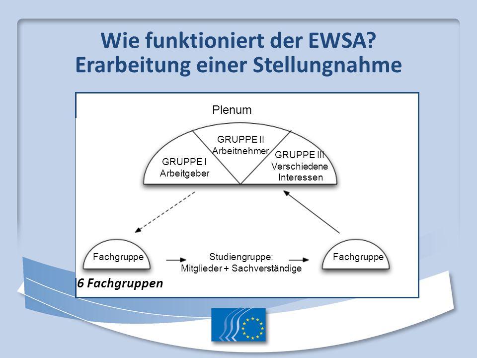 Wie funktioniert der EWSA Erarbeitung einer Stellungnahme