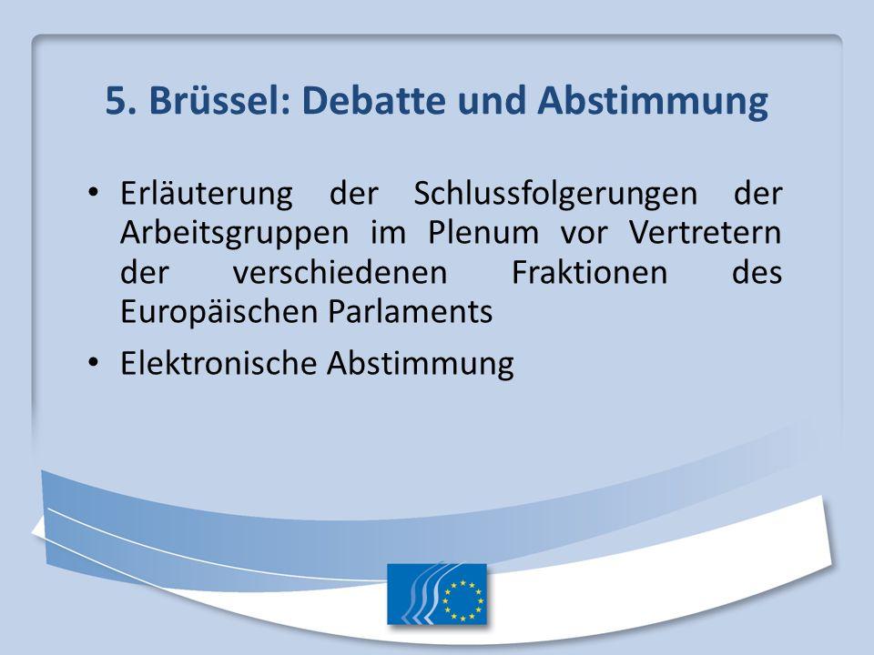 5. Brüssel: Debatte und Abstimmung