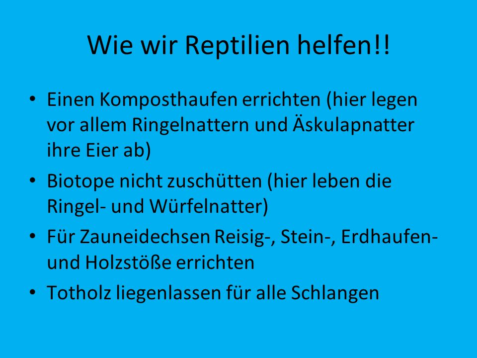 Wie wir Reptilien helfen!!