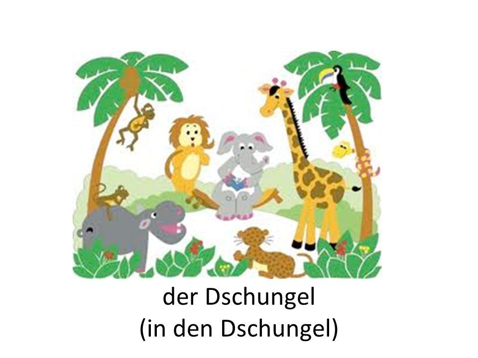der Dschungel (in den Dschungel)