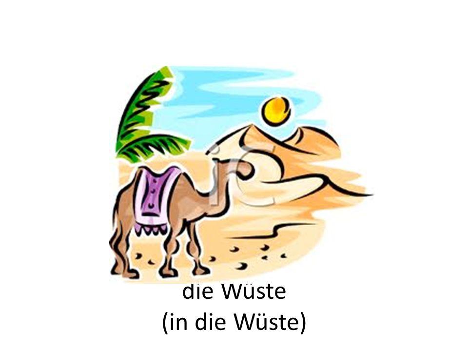die Wüste (in die Wüste)