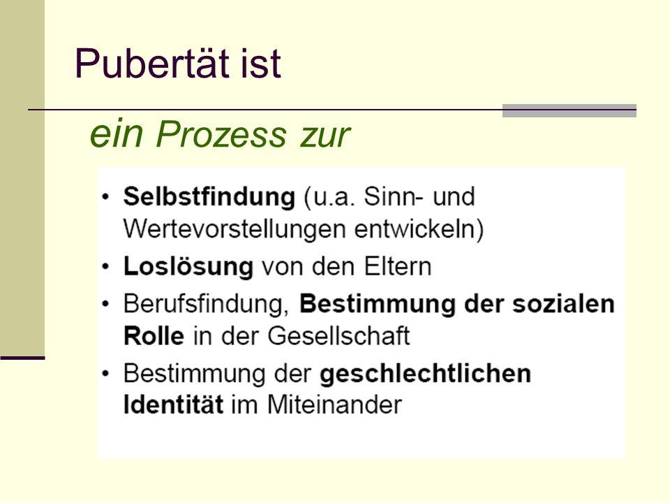Pubertät ist ein Prozess zur