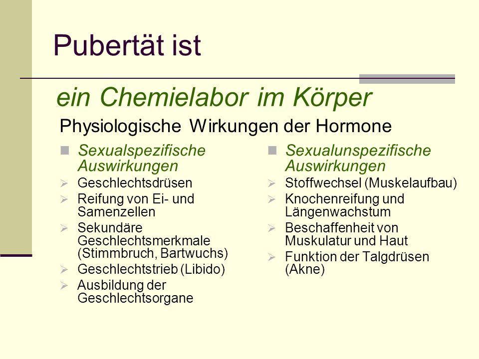 Pubertät ist ein Chemielabor im Körper