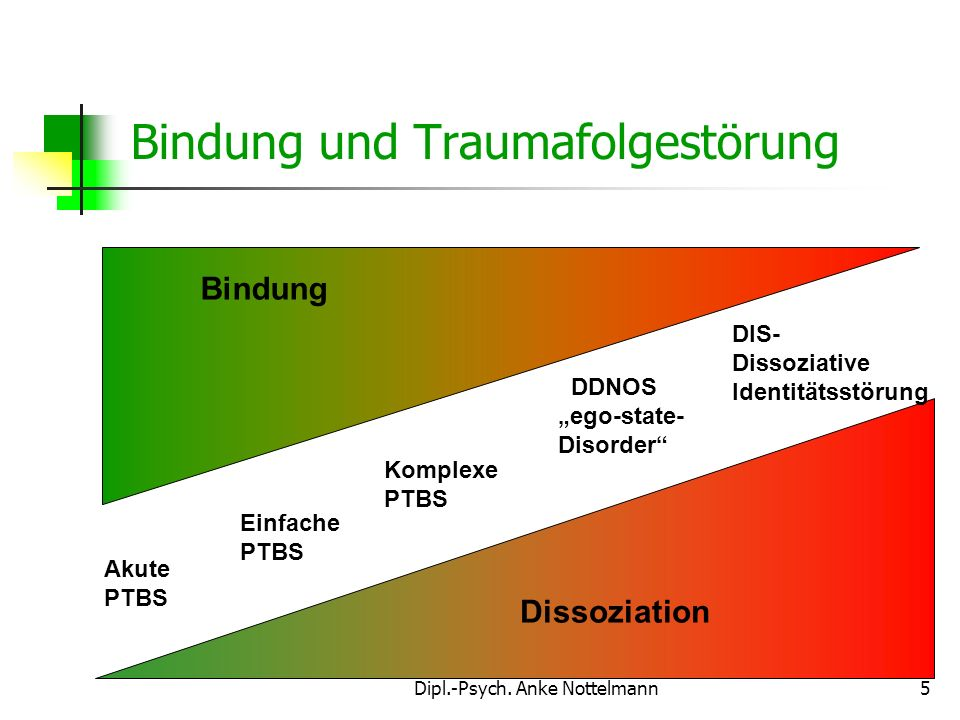 Bindung und Traumafolgestörung