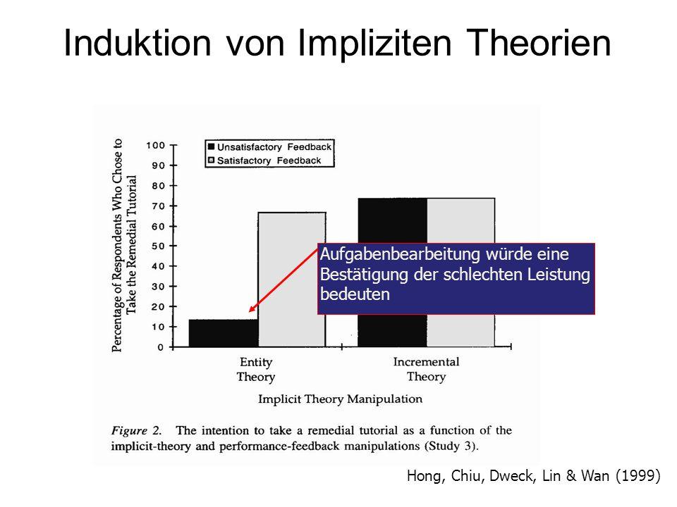 Induktion von Impliziten Theorien