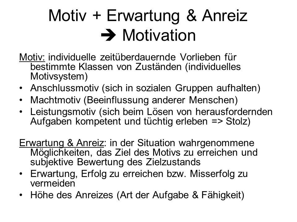 Motiv + Erwartung & Anreiz  Motivation