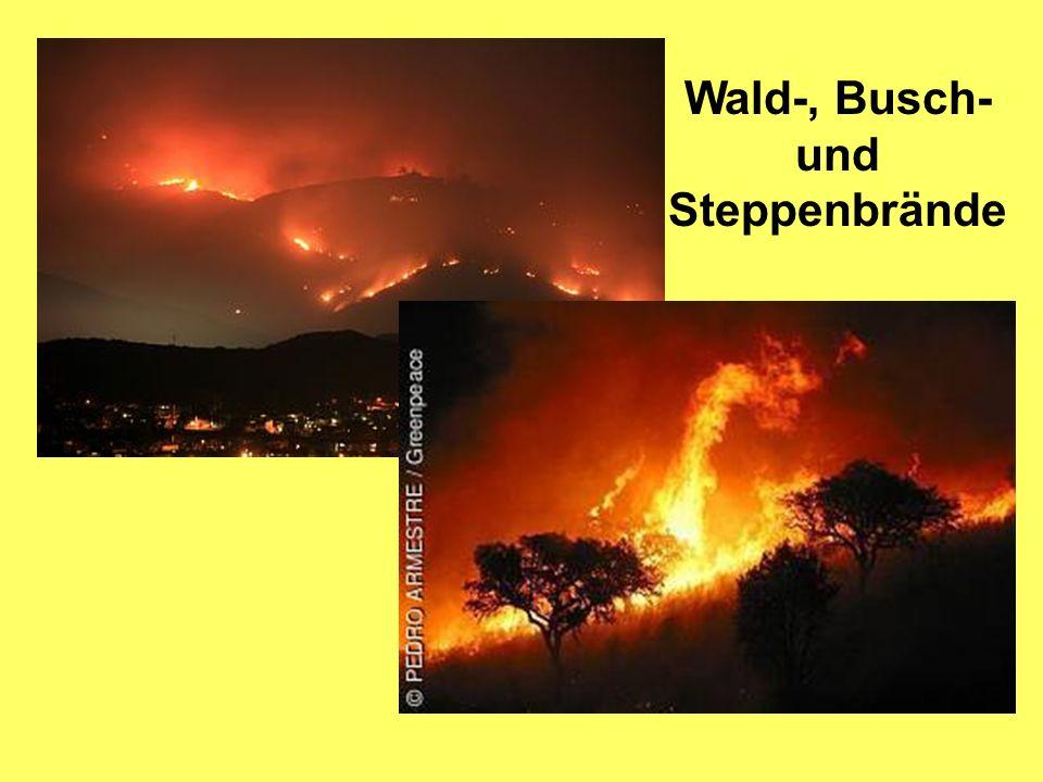 Wald-, Busch- und Steppenbrände