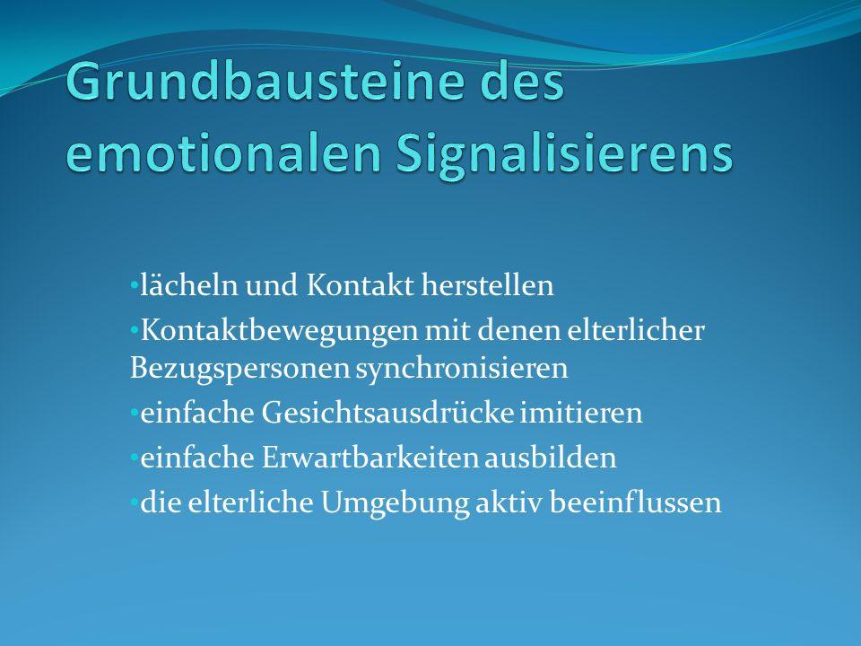 Grundbausteine des emotionalen Signalisierens