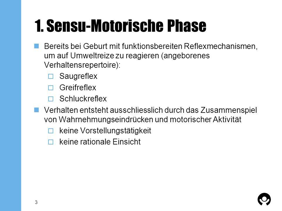 1. Sensu-Motorische Phase